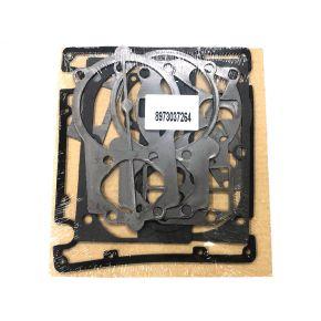 Dichtungssatz für Pumpe B5900